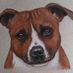 Gedetailleerde schets 'Gina', 15x21cm, pastel op Strathmore